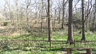 Abbey Wood SSSI - Image: Abbey Wood SSSI