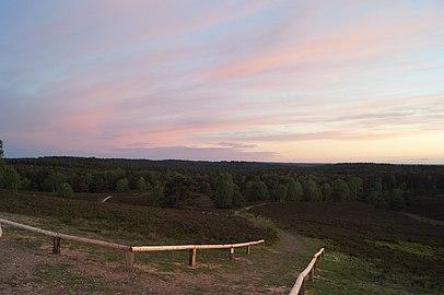 Abenddämmerung auf dem Brunsberg mit Sicht über die Wälder.jpg