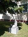 Abstrakte Skulptur, Mészáros Lőrinc Straße, 2021 Kiskőrös.jpg