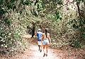 Abuko Nature Reserve (4129302746).jpg