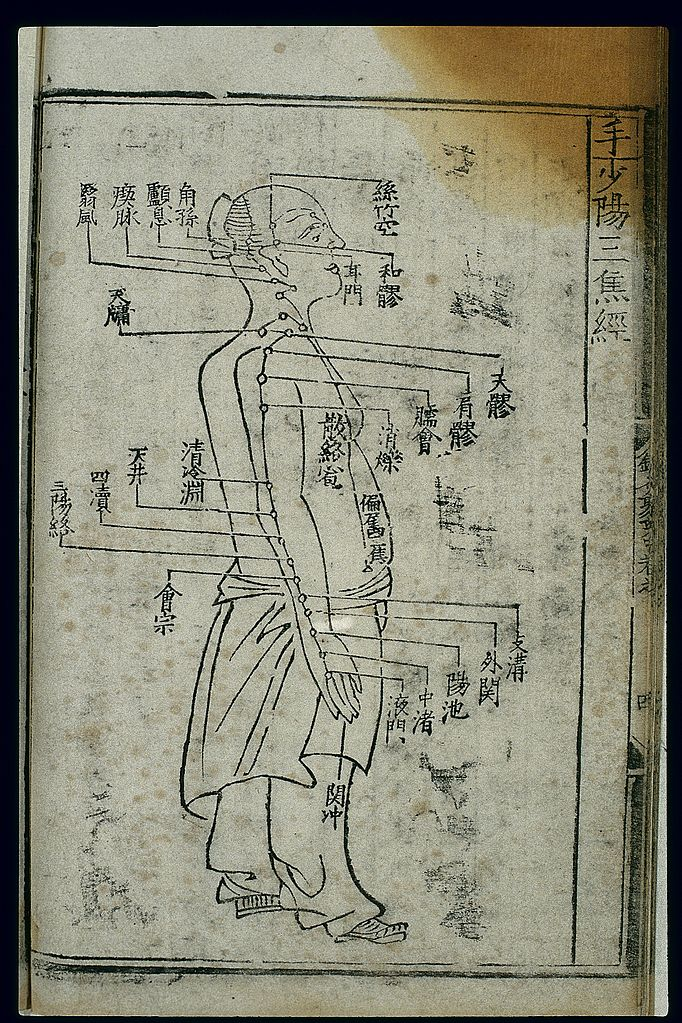 Paper Weight Chart: Acupuncture chart sanjiao channel of hand shaoyang Chinese ,Chart