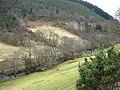 Afon Dulas near Corris - geograph.org.uk - 1180798.jpg