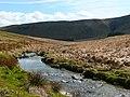 Afon Gwy - River Wye - geograph.org.uk - 1246360.jpg