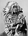 Afraid Of The Bear-Ma-To-Ko-Kepa. Cut Head, Sioux, 1872 - NARA - 519024restoredh.jpg