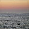 After Sunset (4947253669).jpg