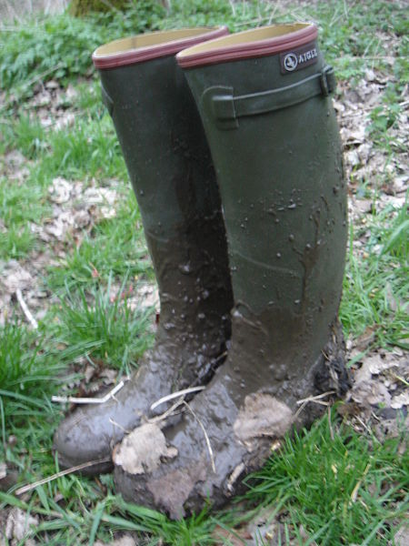 File:Aigle-mud 022.jpg