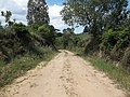 Alameda Cândido Brasil Moro - Palma - Santa Maria, foto 12 (sentido N-S).jpg - panoramio.jpg