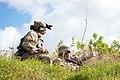 Alaska and Hawaii National Guard (39934432302).jpg
