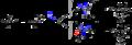 Aldol reaction enantioselectivity.png
