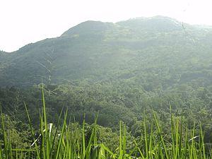 Alagalla Mountain Range - Alagalla from bottom of the range