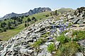 Alpine views on the north side of Electric Peak (2) (37022446392).jpg
