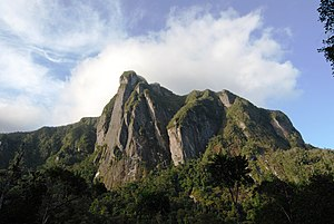 Marojejy National Park - The cliff named Ambatotsondrona, like the rest of the highest peaks at Marojejy, is composed mostly of gneiss bedrock.
