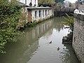 Amboise, wild ducks near the castle - panoramio.jpg