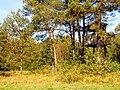 Ambonka - panoramio (2).jpg