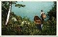 An Adirondack Carry (NBY 6870).jpg