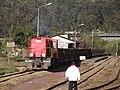Andasibe rail 02.JPG