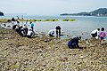 Angel Road Shodo Island Japan05s3.jpg