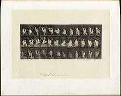 Animal locomotion. Plate 193 (Boston Public Library).jpg