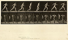 Animal locomotion. Plate 4 (Boston Public Library).jpg