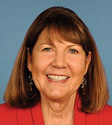 Ann Kirkpatrick 113th Congress.jpg