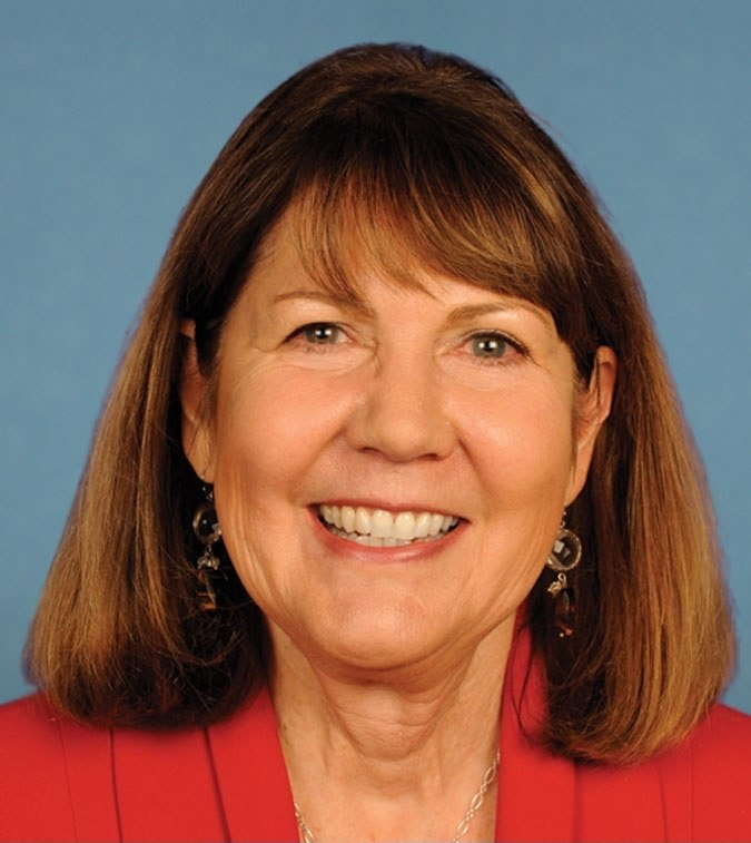 Ann Kirkpatrick 113th Congress