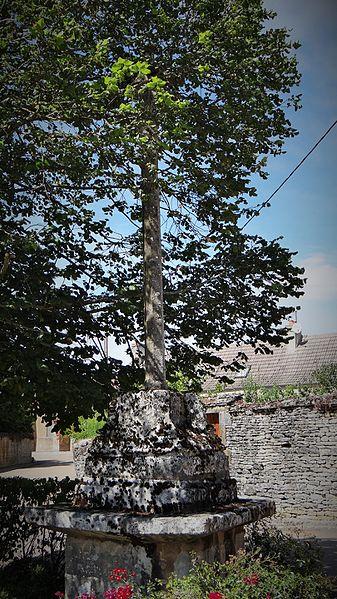 Croix monumentale d'Annoux du XVIIe siècle est située proche de la mairie