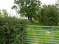 Another gate down the lane - geograph.org.uk - 947749.jpg