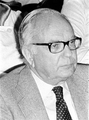 António Rodrigo Pinto da Silva - António Rodrigo Pinto da Silva (c. 1980).