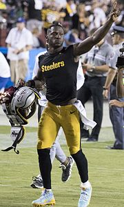 Antonio Brown vs Redskins 2016.jpg