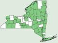 Apocynum androsaemifolium NY-dist-map.png