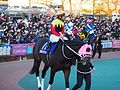 Apollo Kentucky and Hiroyuki Uchida at Oi racecourse (31615615550).jpg