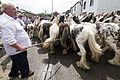 Appleby Horse Fair (9000193136).jpg