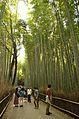 Arashiyama (8740642071).jpg
