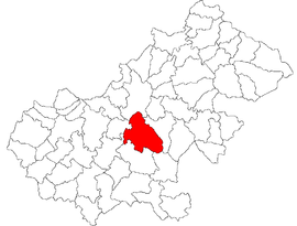 Location in Satu Mare County