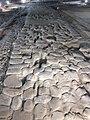 Area archeologica la Fenice di Senigallia - 20120121 - 08 - Strada 1.jpg