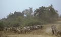 Arli National Park Burkina Faso.png