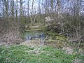 Ashton's Barn and Pond in Carlton Parish - geograph.org.uk - 394825.jpg