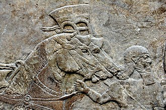 Groom (profession) - Assyrian grooms and horses, from Nimrud, Iraq. The British Museum