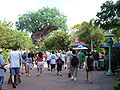 At Disney's Animal Kingdom 1.JPG