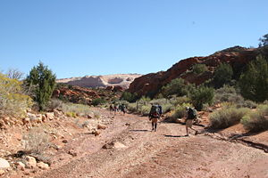 At the Wire Pass Trailhead.jpg