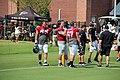 Atl Falcons training camp July 2016 IMG 7763.jpg