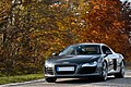 Audi R8 - Flickr - Alexandre Prévot (163).jpg