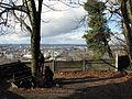 Aussichtspunkt auf dem Grenzacher Hornfelsen.jpg