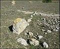 Autre alignement de blocs taillés près de Valère, Lespignan.jpg