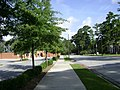 Azalea City Trail 18.jpg