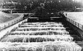 B-18 Fish Ladder at Bonneville Dam (22475922516).jpg