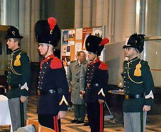 Epaulette - Belgian Grenadiers with red fringed epaulettes