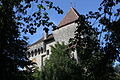 Bailiffs Castle Surpierre Aug 2011.jpg