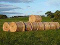 Bales of straw in the evening sun - geograph.org.uk - 2008263.jpg