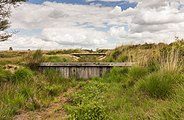Balloërveld, natuurgebied in Drenthe 002.jpg